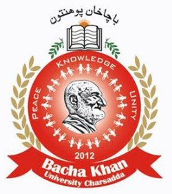 Bacha Khan University KPK Jobs 2019 For Professor , Associate Professor , Deputy Controller of Examination , Assistant Engineer Civil.
