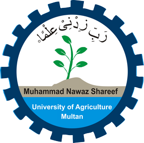 MNS University of Agriculture Multan Jobs 2019 For Research Associate