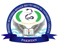 (SMBBMU) Shaheed Mohtarma Benazir Bhutto Medical University Larkana Jobs 2019 For Professor and More