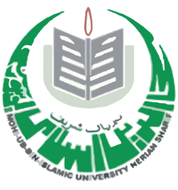 Jobs in Mohi ud Din Islamic University Nerian Sharif AJK 2020