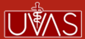 University of Veterinary & Animal Sciences Lahore Jobs 2021