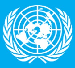 Jobs in United Nations Military Observer Group in India and Pakistan 2020