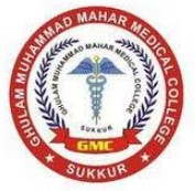 Ghulam Muhammad Mahar Medical College Hospital Sukkur Jobs 2020