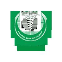 PIR Abdul Qadir Shah Jilani Institute of Medical Sciences Gambat Jobs 2021